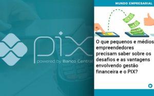 O Que Pequenos E Medios Empreendedores Precisam Saber Sobre Os Desafios E As Vantagens Envolvendo Gestao Financeira E O Pix  - Trust Contabilidade